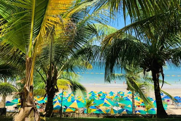 Barracas na Praia da Ponta de Nossa Senhora de Guadalupe (Foto: Esse Mundo é Nosso)