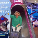 A Look at Harmony of the Seas