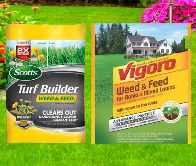 Scotts Fertilizer Vs Vigoro Fertilizer Which Is Best Essential Home And Garden