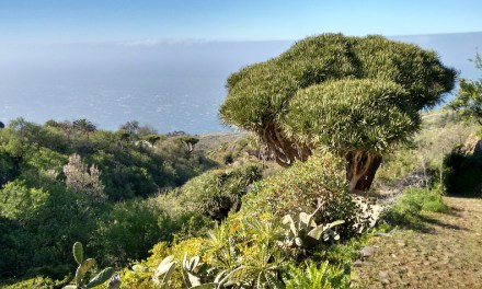 Headwater adds new walking holidays on La Palma and Gran Canaria