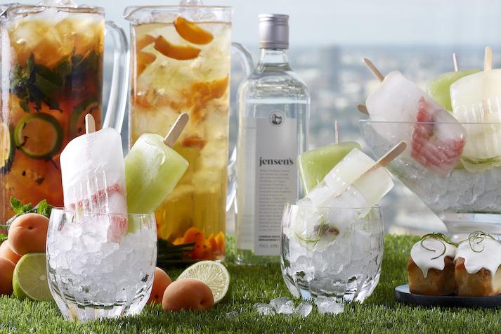 Summer Gin Terrace - LANG - High Res
