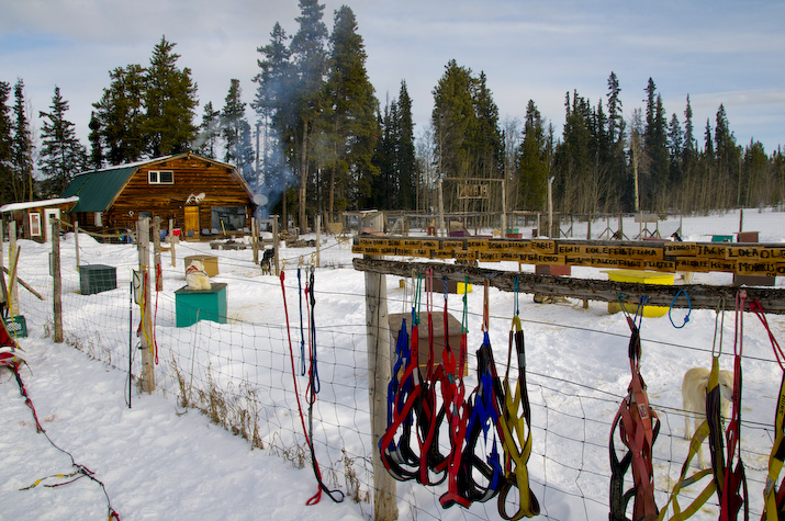 Yard and lodge at Alayuk Adventures