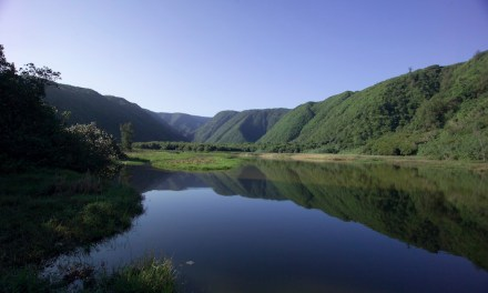 Discover Hawai'i and its diverse wellness and healing offerings