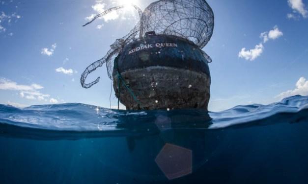 World War II ship becomes Caribbean dive site