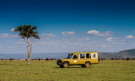 Fancy going on safari for the weekend? You can with the Hemingways Collection
