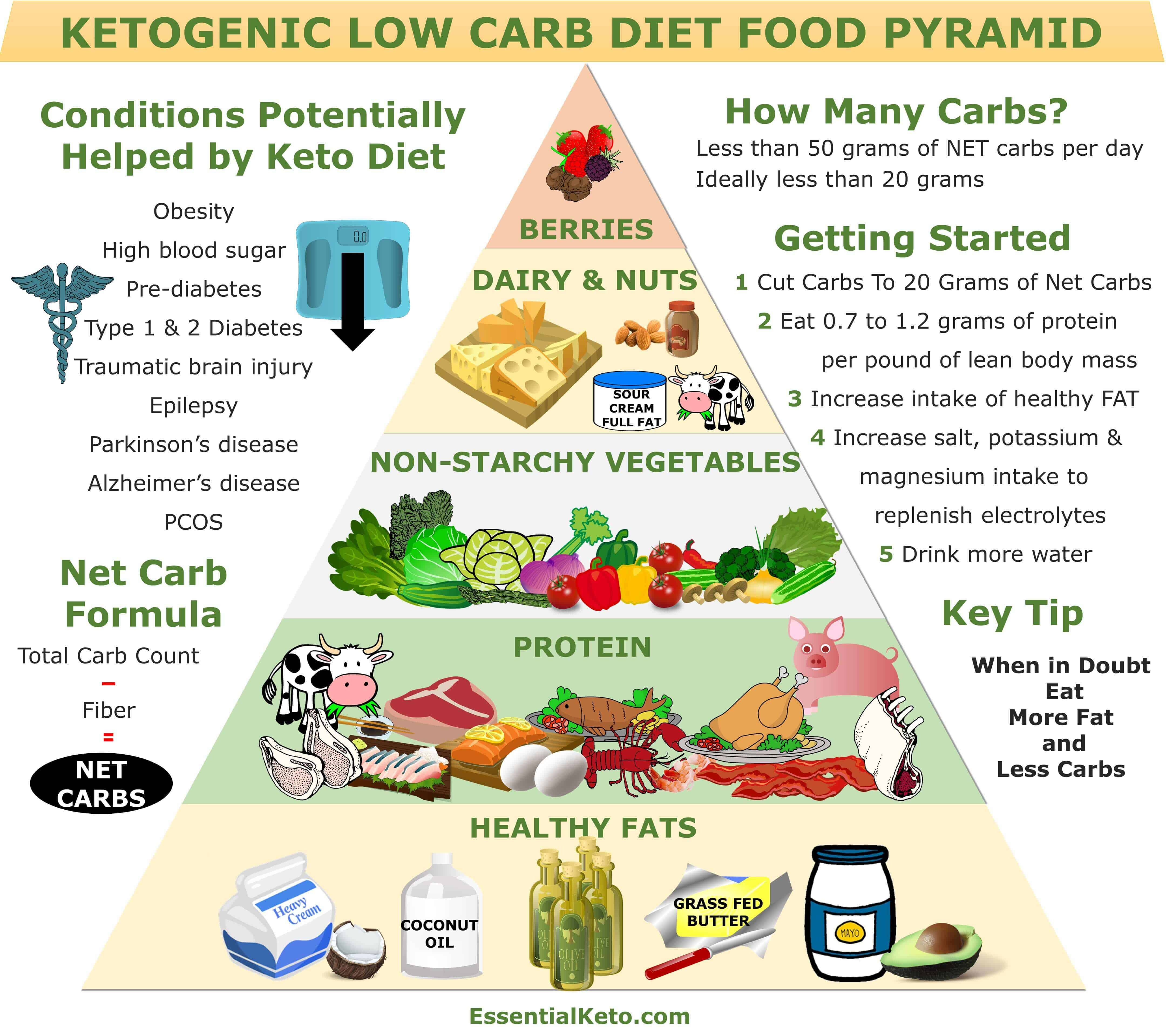 new food pyramid diagram cat3 phone wiring keto essential