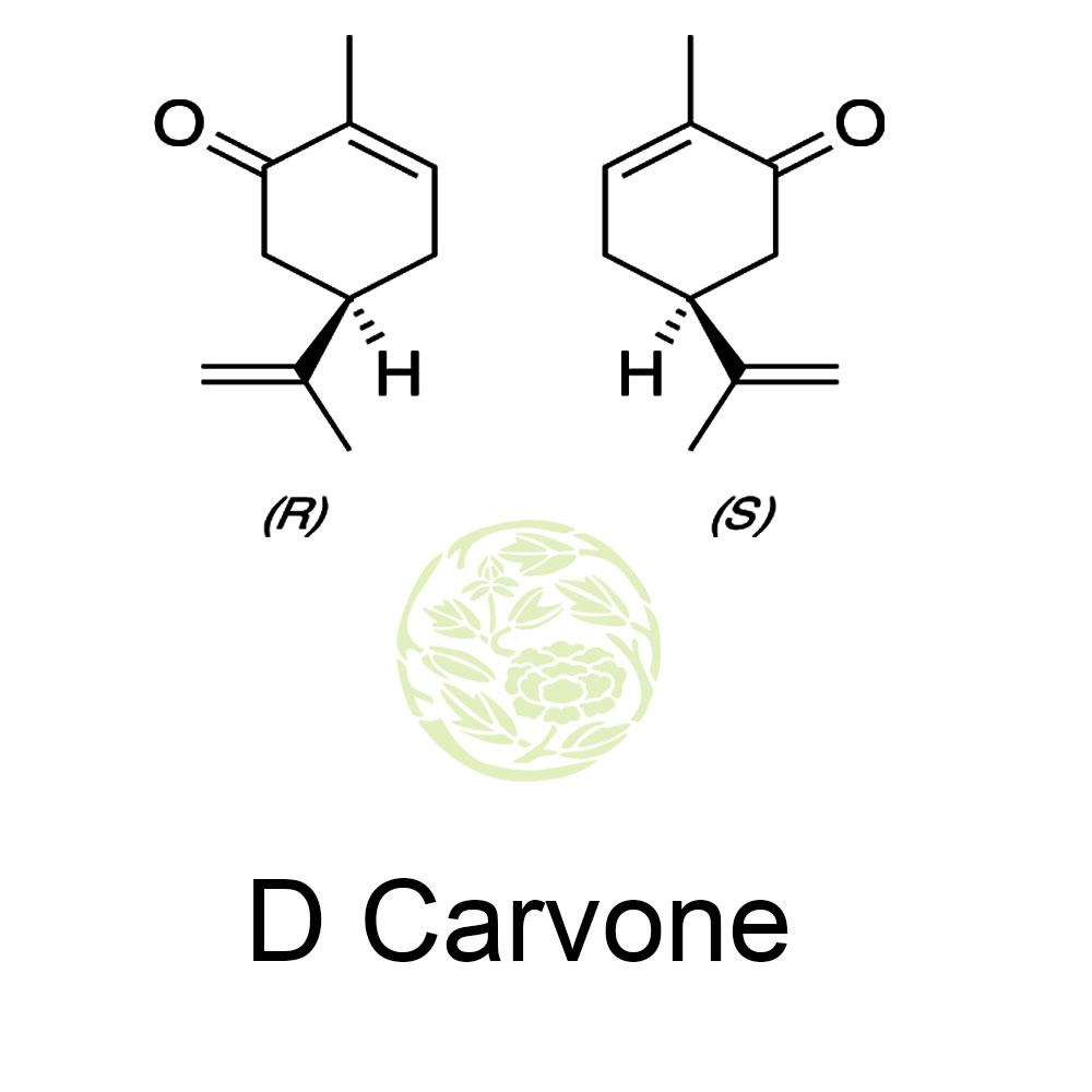 D Carvone, Carvone