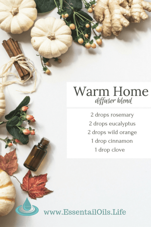 Warm up your spirit with this Warm Home DIY essential oil blend featuring rosemary, eucalyptus, wild orange, cinnamon, and clove essential oils... perfect for days where you just want to pretend the floor is hot lava!