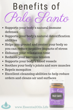 Palo Santo essential oil is beneficial to keep on hand when you want support for your muscles, bones, joints, immune and circulatory functioning. It has a light woody aroma that inspires a peaceful environment in your home or office