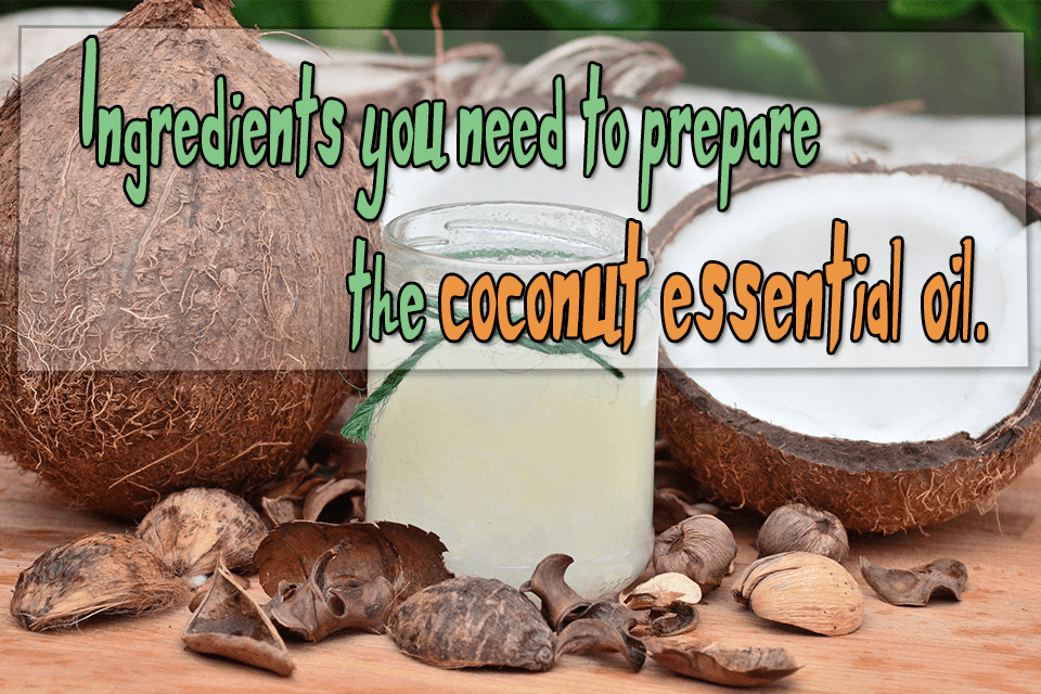 Ingredients needed for the coconut essential oil