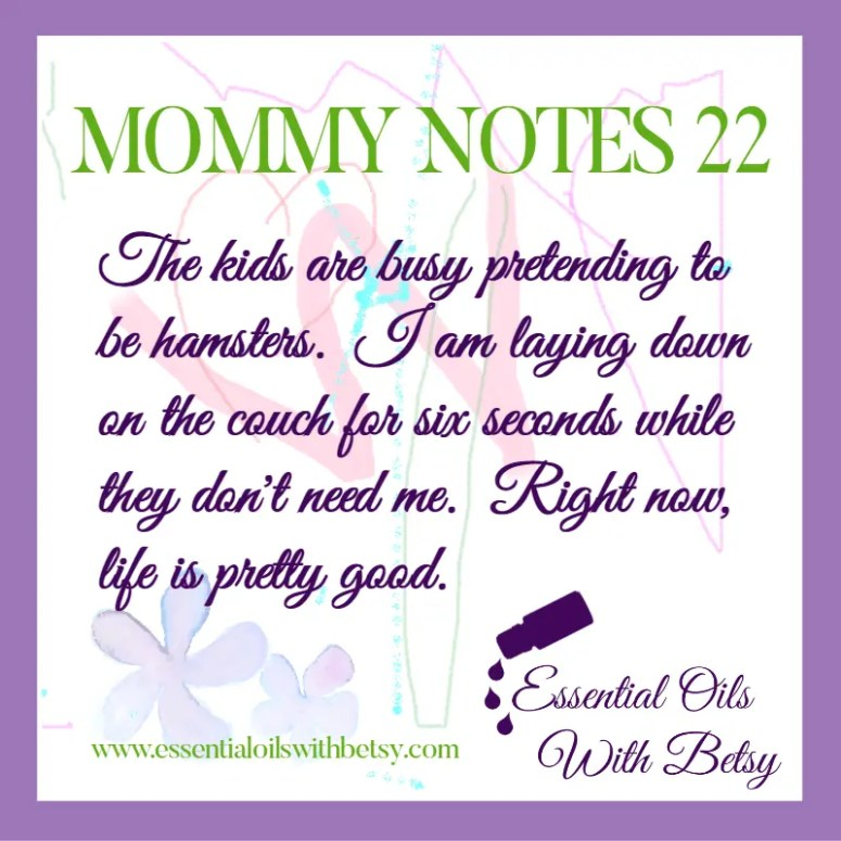 MOMMY NOTES 22