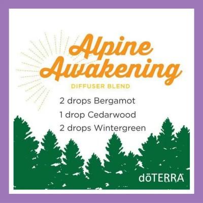 27 doTERRA diffuser blends | Alpine Awakening - 2 drops Bergamot 1 drop Cedarwood 2 drops Wintergreen
