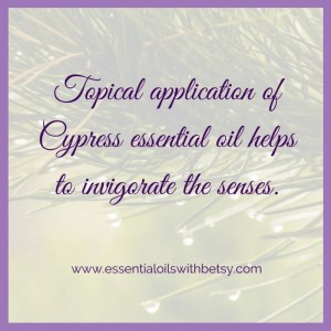 Topical application of Cypress essential oil helps to invigorate the senses.