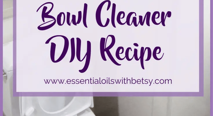 Natural Toilet Bowl Cleaner DIY Recipe