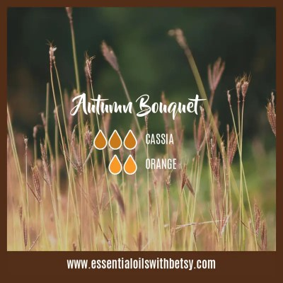 Autumn Bouquet Fall blend for diffuser: Cassia, Orange