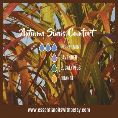 Autumn Sinus Comfort Blend for oil diffuser: Peppermint, Lavender, Eucalyptus, Orange