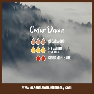 Cedar Dawn: Cedarwood, Elevation, Cinnamon