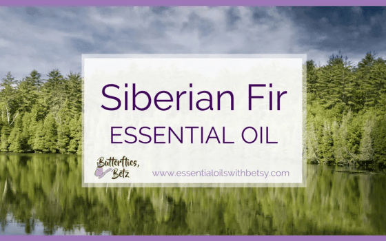 DoTERRA Siberian Fir Essential Oil doTERRA Siberian Fir essential oil is coming to doTERRA! At the 2107 doTERRA convention, Dr. Hill announced that we will now carry doTERRA Siberian Fir Oil. Siberian Fir is an exciting addition to our essential oil arsenal! You can read a list of all new doTERRA oils in 2017 HERE. DoTERRA Siberian Fir Essential Oil Suggested Uses