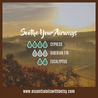 Fall Diffuser Blend Of Oils: Soothe Your Airways: Cypress, Siberian Fir, Eucalyptus