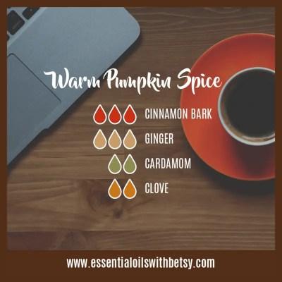 Warm Pumpkin Spice Fall Diffuser Blend Cinnamon, Ginger, Cardamom, Clove