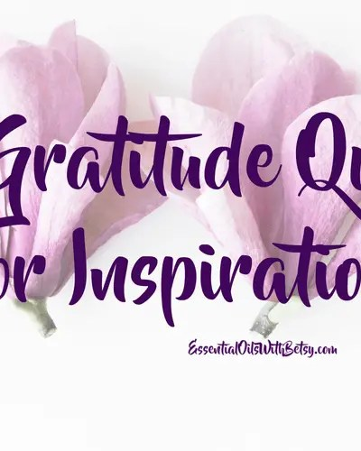 12 Gratitude Quotes For Inspiration