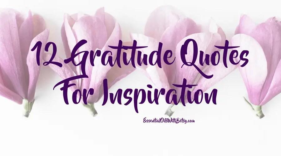 12 Gratitude Quotes For Inspiration
