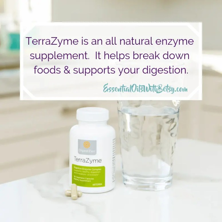 TerraZyme is an all natural enzyme supplement. It helps break down foods & supports your digestion.
