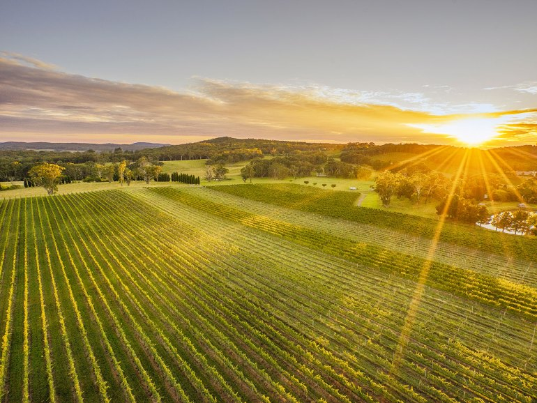Scenic country views surrounding Centennial Vineyards, Bowral in the Southern Highlands region - photo Destination NSW