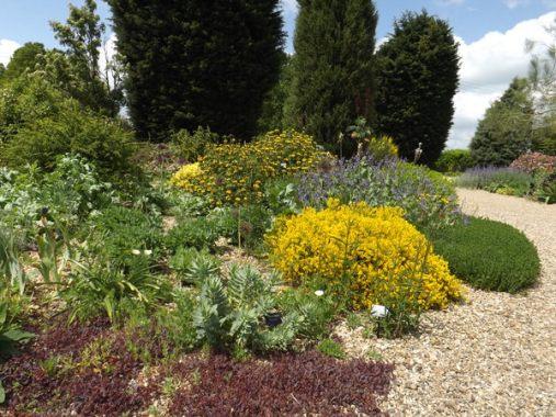 Beth Chatto Gardens (10)