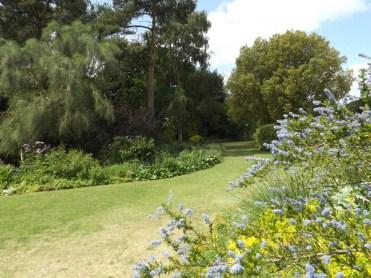 Beth Chatto Gardens (44)