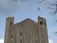 Hedingham Castle Snowdrops (31)