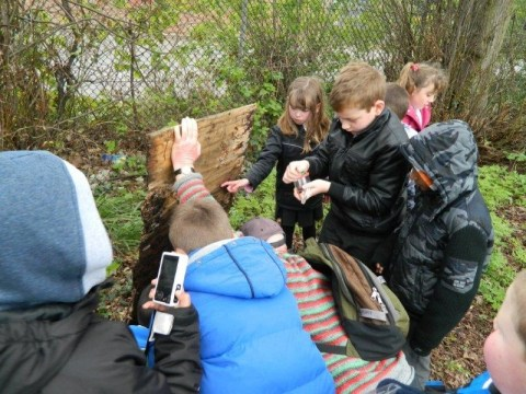 Nature hunt at North Road Burial Ground