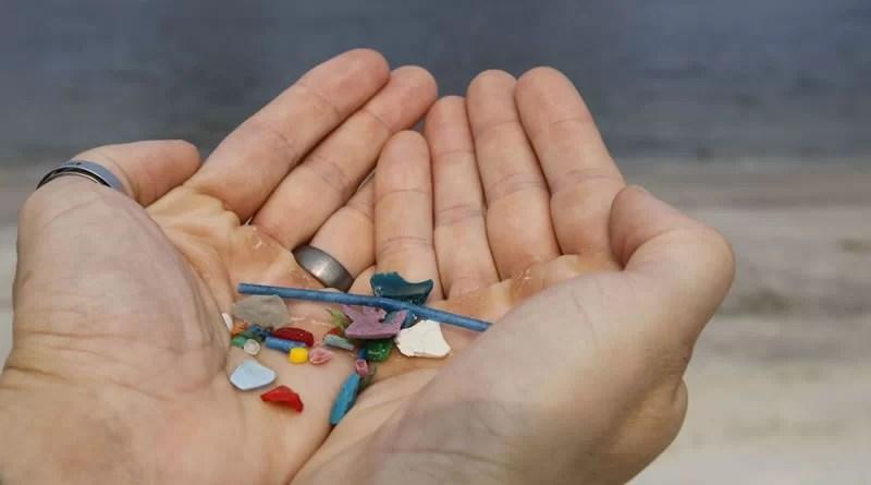ingestão de microplásticos