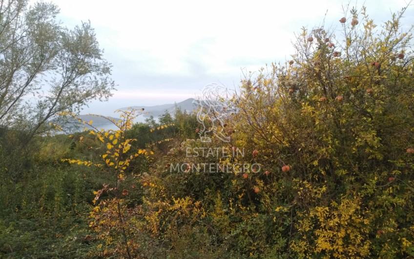 Land above Sveti Stefan, Budva, 5328m²