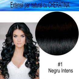 Extensii Par Natural cu Cheratina, lungime 55 cm, negru intens, 100 buc extensii