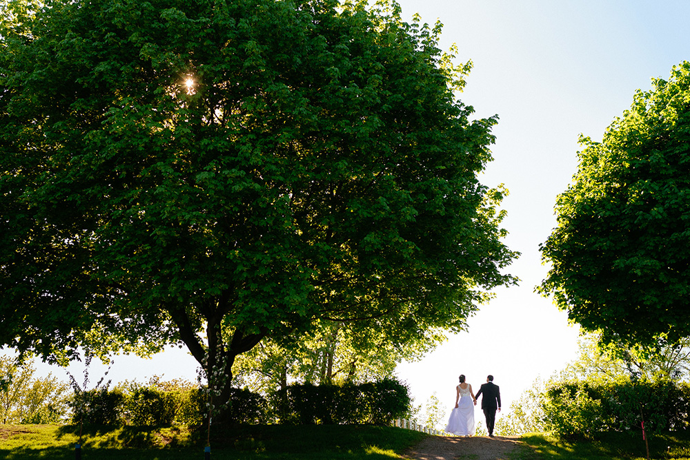 Wedding couple walking in orchard