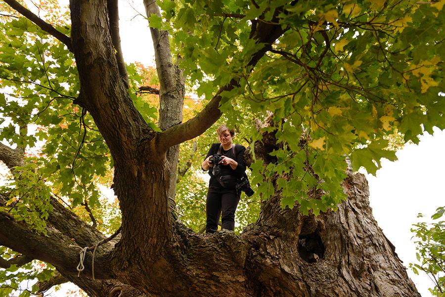 Wedding photographer up in a tree - Photo: John Koo