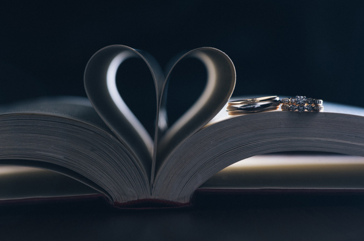 Award-winning wedding photo of wedding rings on a book