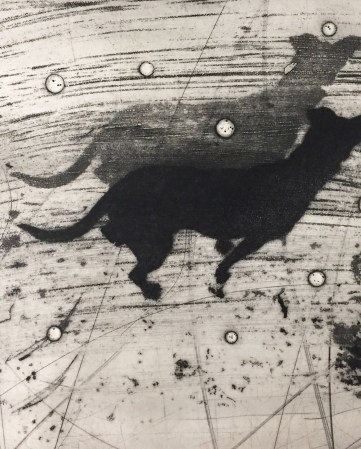 Experimental photographic printmaking: collagraph