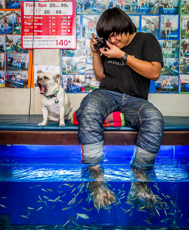 Fish_Spa_Chiang_Mai_Thailand_2014_©_Jim_Newberry