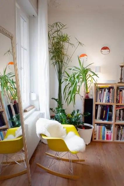 Ideas para decorar interiores con plantas  Decoracin de