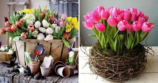 Arreglos florales con tulipanes  Decoracin de Interiores