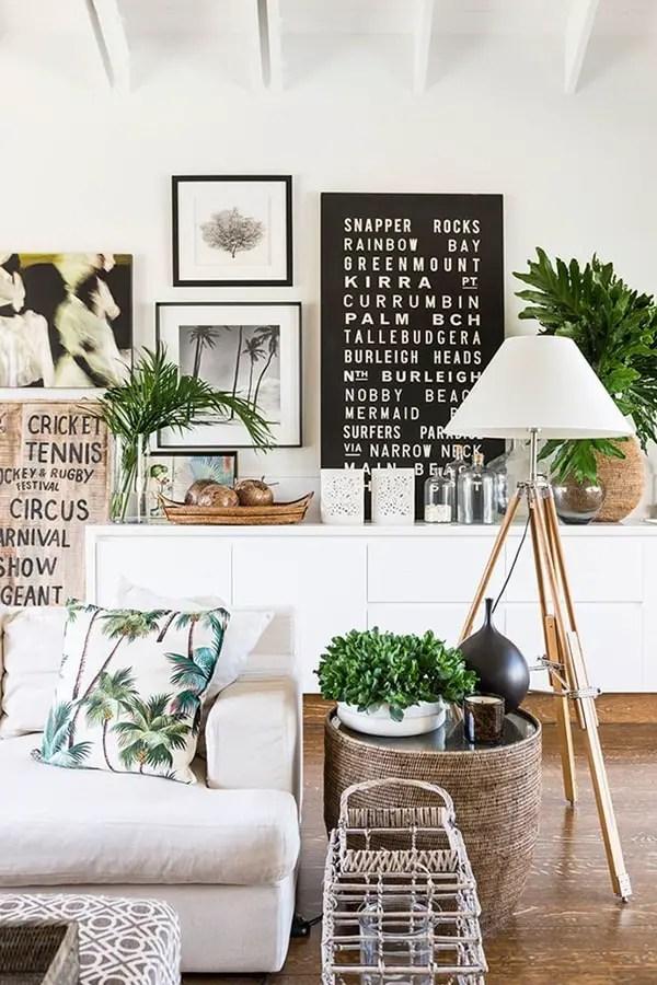 Las mejores plantas para decorar interiores  Decoracin