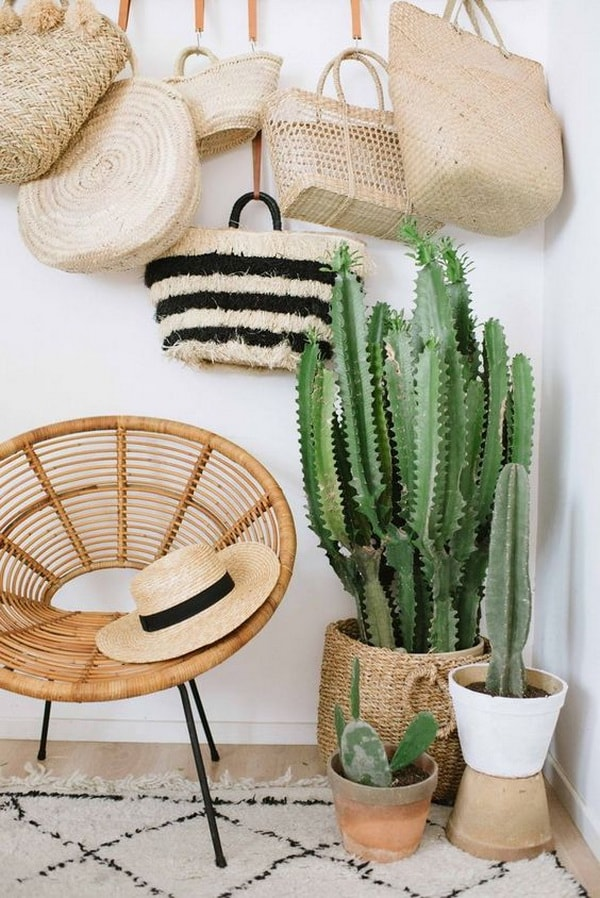 Interiors Decoration with Cactus in The Hall