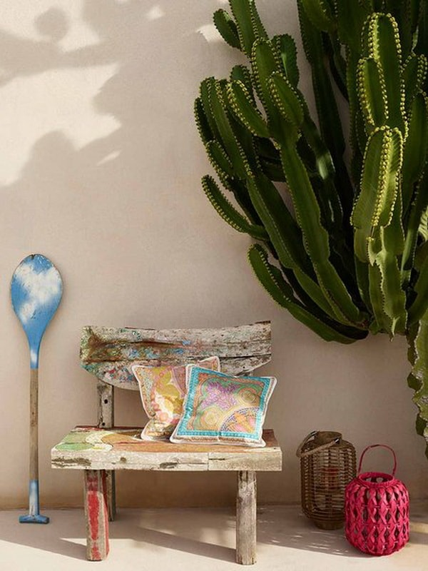 Ideas para decorar interiores con cactus Plantas de interiores