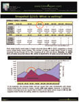 2Q2010 The Estin Report: Aspen Snowmass Residential Real Estate Image
