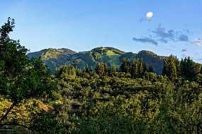 Aspen real estate 081516 145009 27 Nighthawk Drive 8 190H