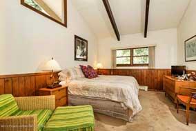 Aspen real estate 082816 144879 351 Meadow Road 4 190H