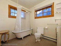 Aspen real estate 100216 129453 611 W Main Street 5 190H