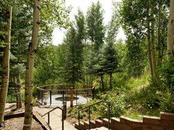 Aspen real estate 101616 135744 590 Wood Road 36 6 190H